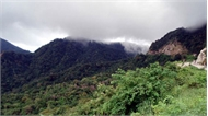 Chuyện ly kỳ về rắn khổng lồ nặng 300 - 400 kg ở núi Cấm