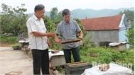 Đồng vốn chính sách thêm nguồn lực giúp người nghèo