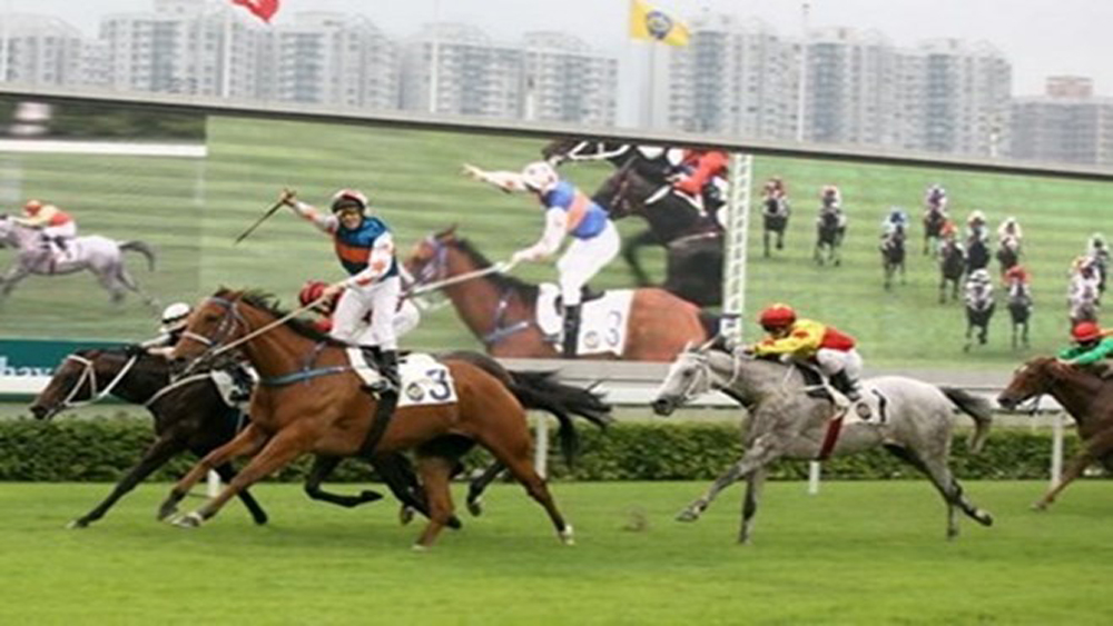 Hanoi, horse racing track, multifunctional entertainment complex, Soc Son district, socio-economic development, local tourism
