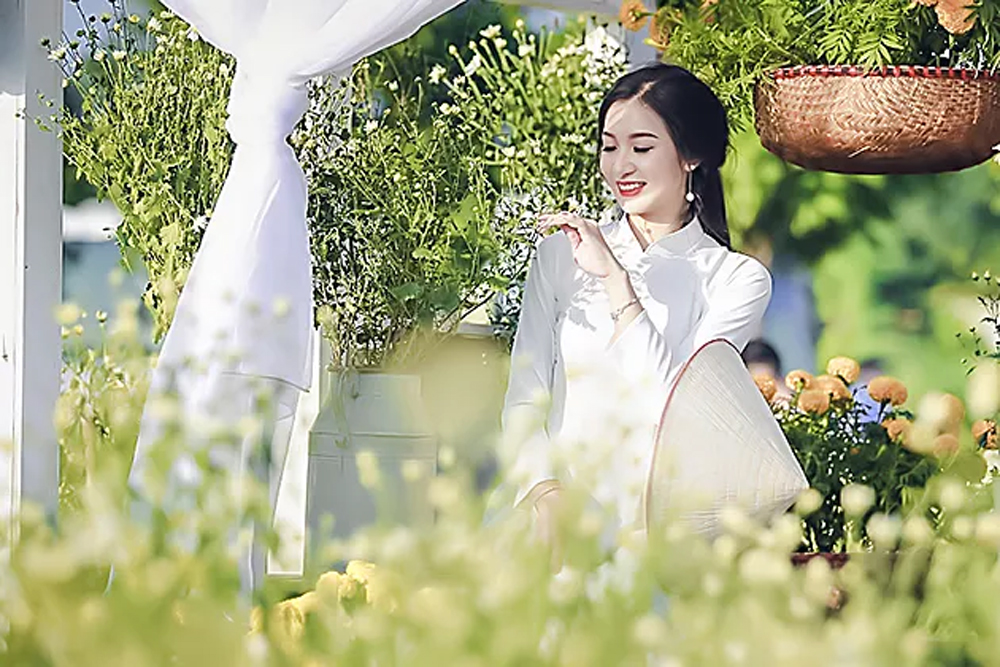 Young women, show off, pure white daisies, late autumn,  graceful young Hanoian women, pure-white ao dai, serenely beautiful picture, capital city