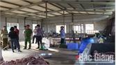 Xử phạt hành chính 15 triệu đồng đối với cơ sở sơ chế sườn lợn không rõ nguồn gốc