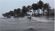 """Bão số 9 Usagi """"đe dọa"""" các tỉnh Nam Trung Bộ, gây mưa rất to"""