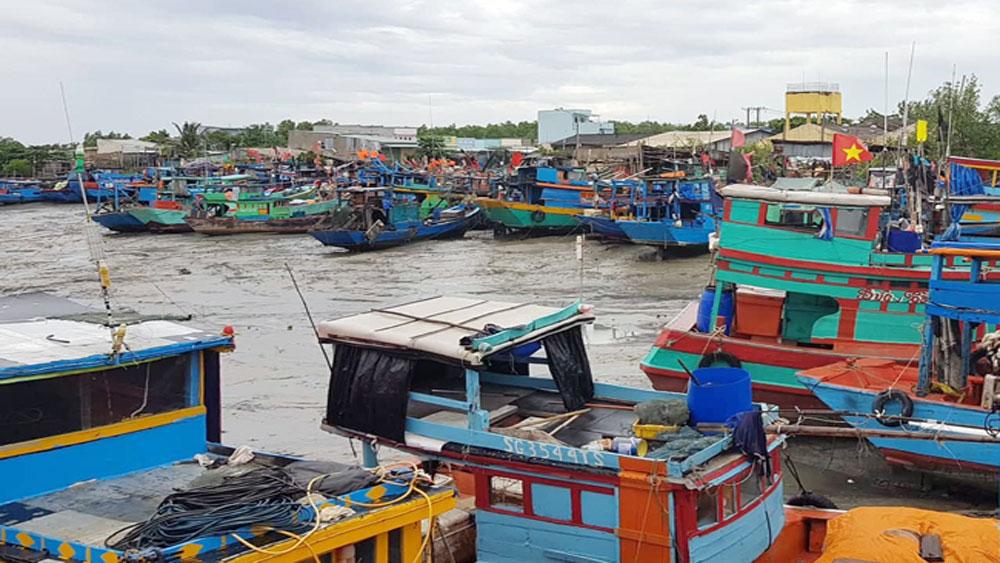 Bão số 9 gây mưa to, gió giật mạnh tại Cần Giờ, TP Hồ Chí Minh