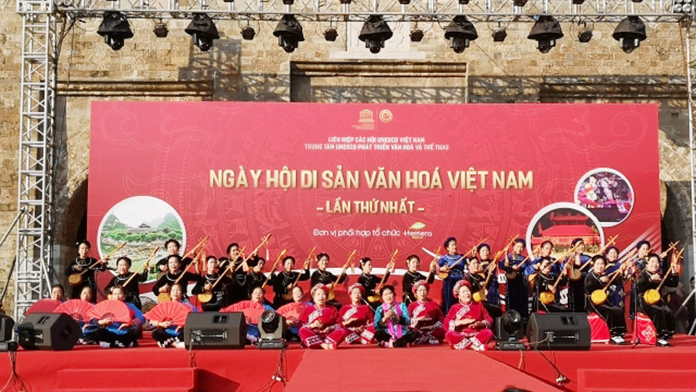 Various activities mark Vietnam Heritage Day