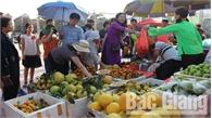 Sản phẩm đặc trưng huyện Lục Ngạn được tiêu thụ mạnh