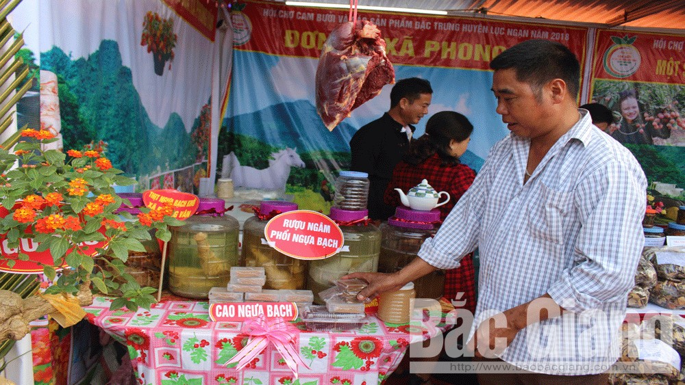 Luc Ngan fruit fair, Bac Giang province, local fruits, working achievements, hill eco-tourism, sustainable value chain, fruit trees, key products, quality consumer products, agricultural machinery