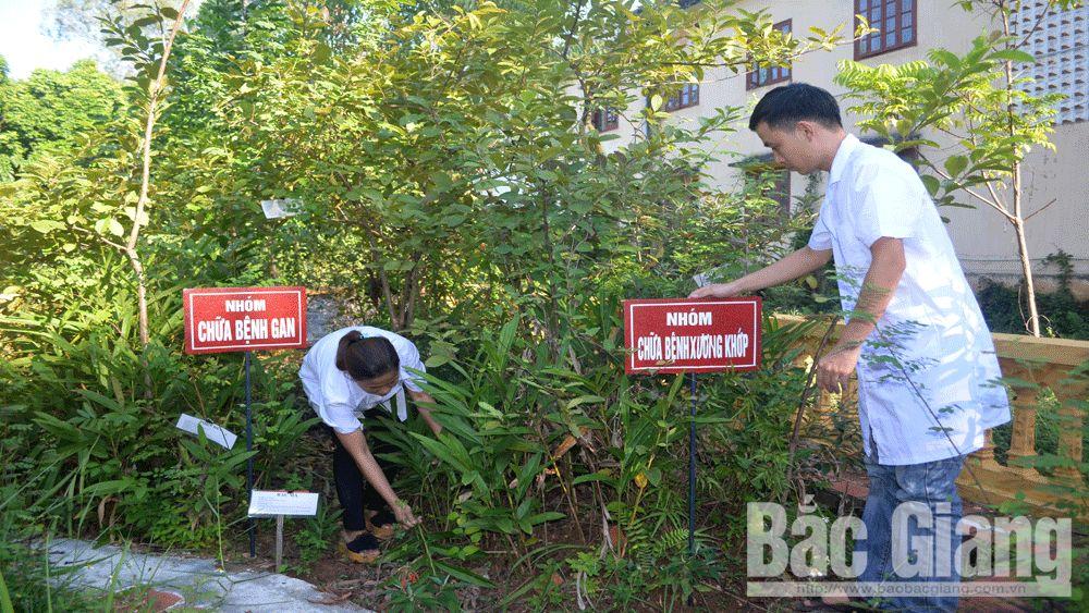 y tế cơ sở, khám, chữa bệnh, Bắc Giang, Trạm y tế, y, bác sĩ, Sở Y Tế, Bắc Giang