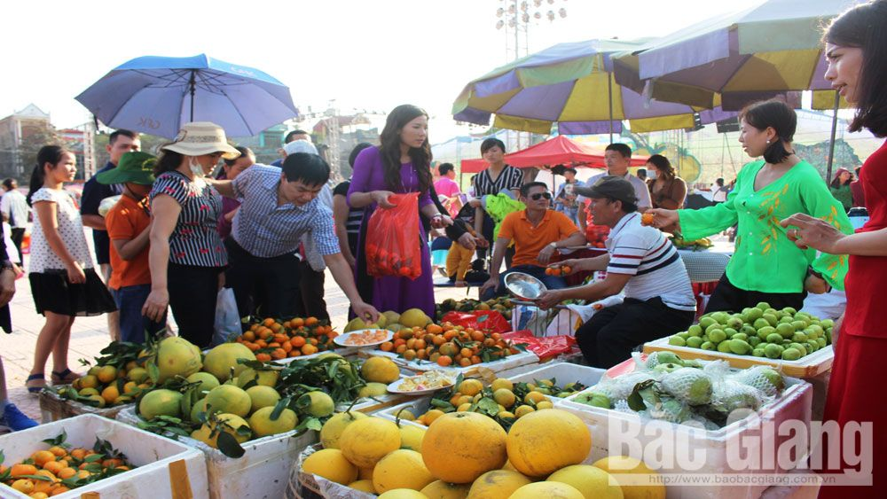 Over 135 tonnes of fruits sold at Luc Ngan fair for orange, pomelo and signature products