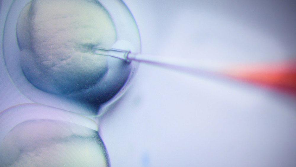 Đón hai bé sinh đôi được chỉnh sửa gen đầu tiên trên thế giới
