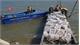 Bắt giữ vụ vận chuyển trên 2.000 con chim bồ câu nhập lậu
