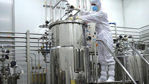 Lần đầu tiên Việt Nam tự sản xuất vắc-xin lở mồm long móng