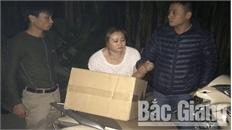Công an huyện Yên Thế (Bắc Giang) bắt giữ đối tượng buôn bán, vận chuyển hơn 300 kg pháo nổ