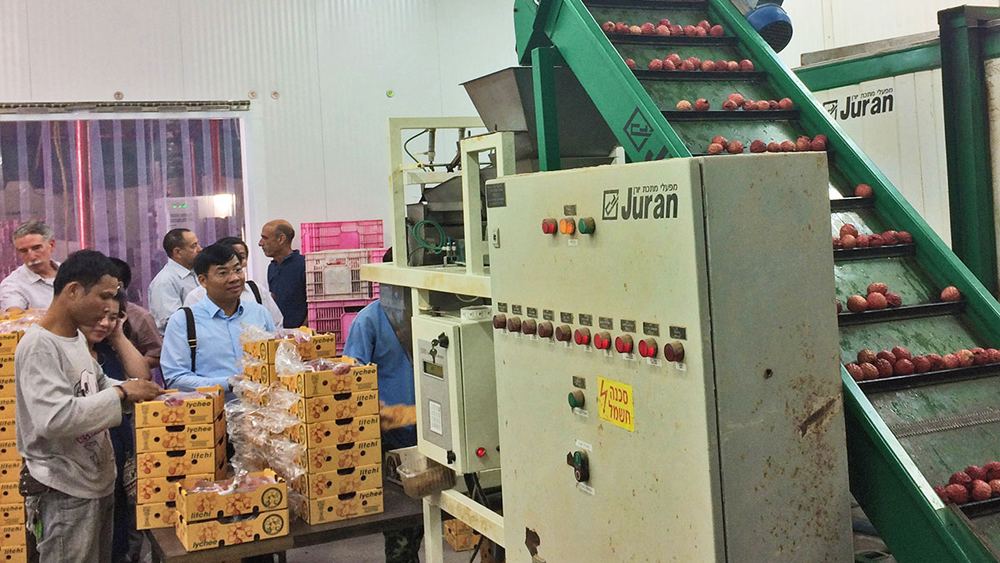 Bac Giang boosts cooperative ties with Israeli partners