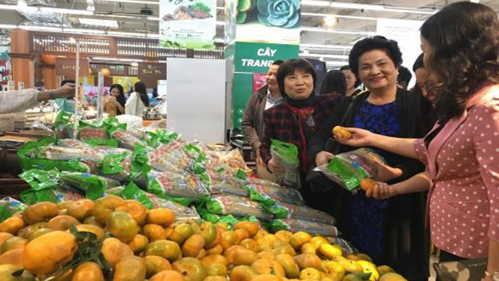 Yen Bai's specialties, Hanoi, Big C Thang Long,  Central Group, Vietnam, Vietnamese agricultural products, local products, farm produce
