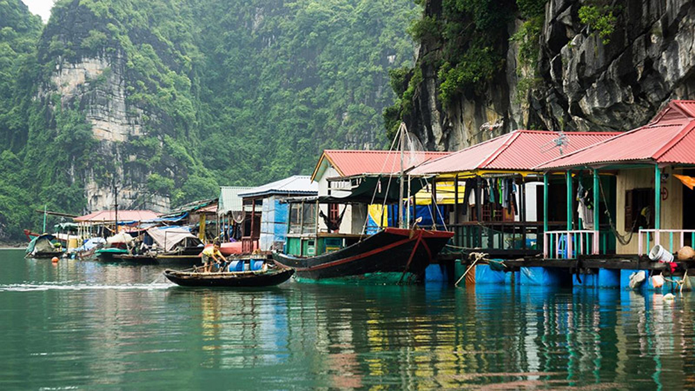 "Serene Lan Ha Bay, ""second"" Ha Long bay, Vietnam, diversified species of plants, tourist map, lively natural museum,  natural tranquil, romantic landscape, international visitors"