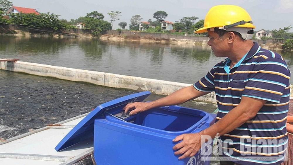 Hiệp Hòa, lãi nuôi cá, tạo sông trong ao