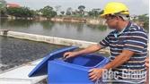 """Lãi hơn 400 triệu đồng sau gần 6 tháng nuôi cá theo công nghệ """"sông trong ao"""""""