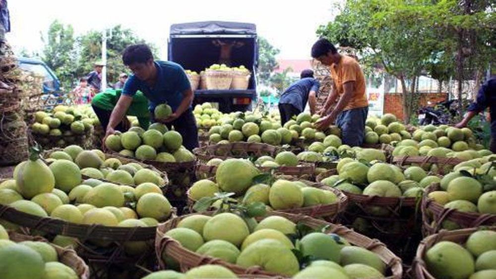 """Phê chuẩn quyết định khởi tố và tạm giam 3 đối tượng trong vụ """"bảo kê"""" ở chợ Long Biên, Hà Nội"""