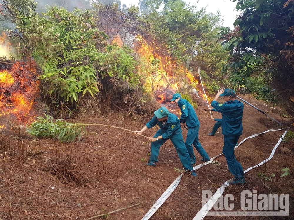TP Bắc Giang, diễn tập phòng cháy, chữa cháy rừng, Bắc Giang, cháy rừng