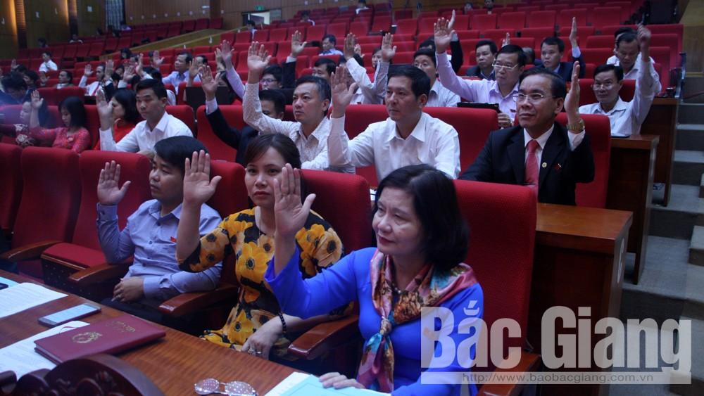 Các đại biểu biểu quyết thông qua các nghị quyết tại kỳ họp.