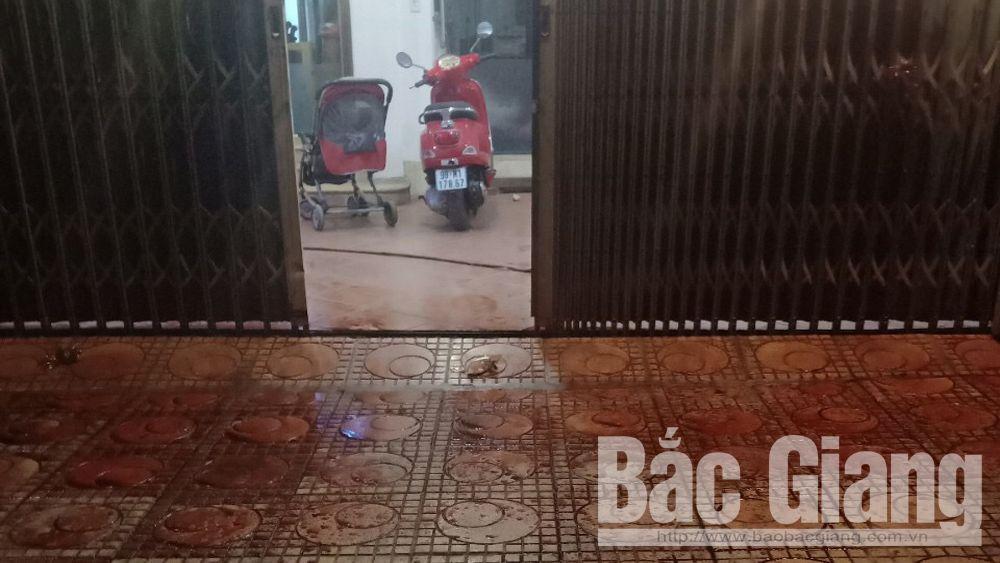Bắc Giang: Truy đuổi đối tượng ném chất bẩn, một người bị thương