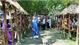 Thua Thien-Hue promotes revival of bai choi