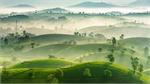 Stuff of dreams: stunning vistas of Long Coc tea hills