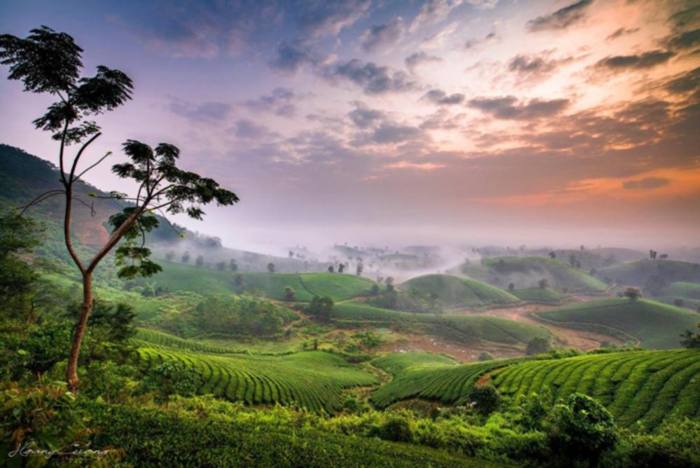 Stuff of dreams, stunning vistas, Long Coc tea hills, otherworldly beauty, photographer's dream, Phu Tho province