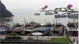 Giảm 20% mức phí tham quan vịnh Hạ Long cho du khách từ 7 - 16 tuổi