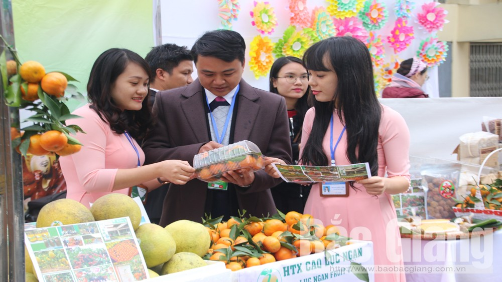 Bac Giang promotes diverse products at International Cuisine Festival