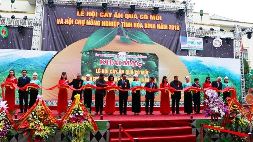 Hoa Binh hosts Citrus Fruit Festival and Agricultural Fair