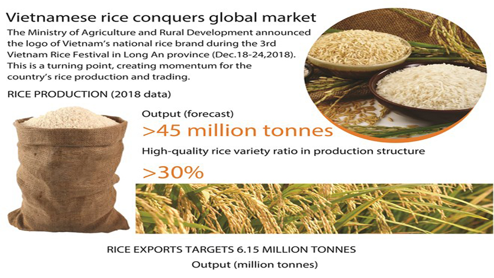Vietnamese rice conquers global market