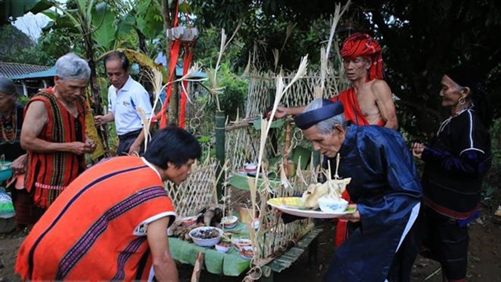 Traditional festival of Pa Co ethnic group restaged in Thua Thien – Hue