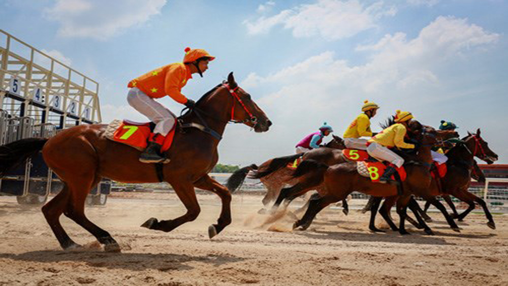 Horse racing course added into Hanoi's planning