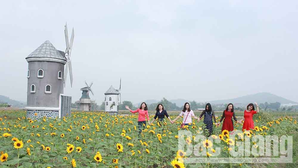 Lễ hội hoa và ẩm thực ở phường Đa Mai tổ chức vào Tết Dương lịch