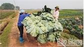 Tân Thịnh: Giữ lửa phong trào xây dựng nông thôn mới
