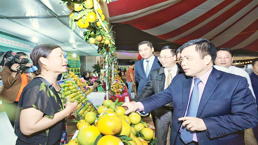 Vinh Orange Fair 2018, Nghe An province, safe products, high quality, clear origins, four-day event, scientific and technological applications,  key specialty