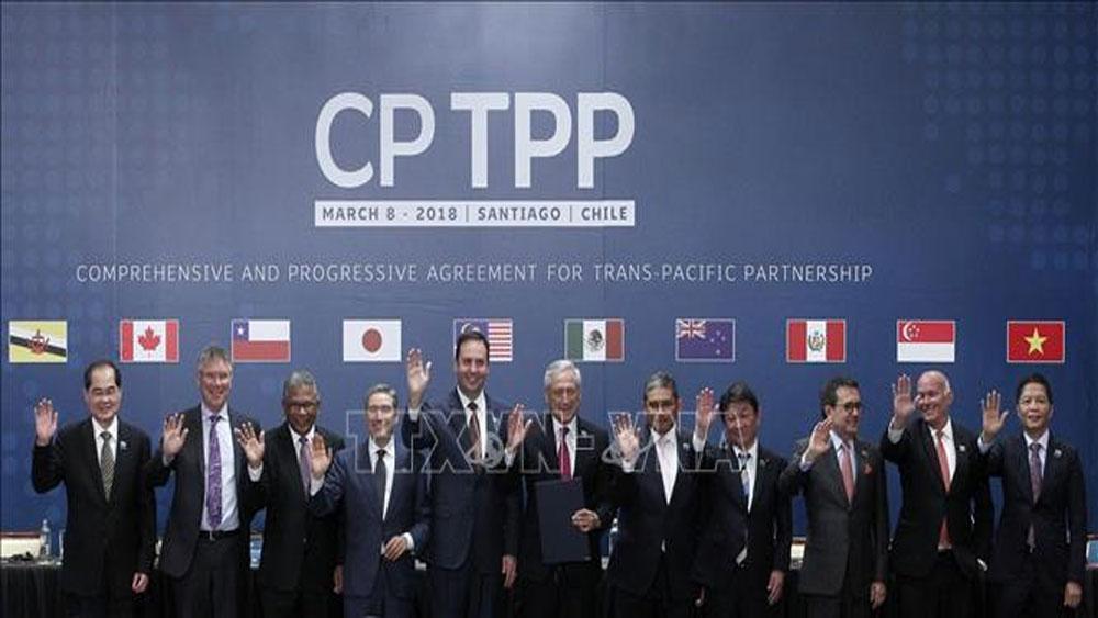 CPTPP chính thức có hiệu lực