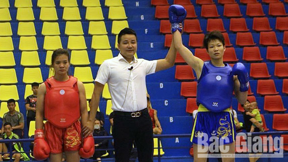 Bac Giang's sports affirm position at national arena