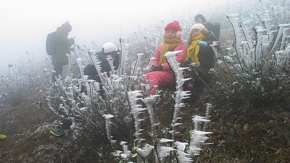 Frost appears in -0.5C in Lang Son, extreme cold to prevail across the North until next week