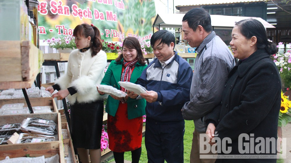 TP Bắc Giang sôi nổi hoạt động văn hóa - thể thao mừng Xuân 2019