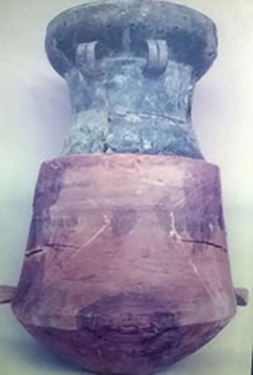 Mộ chum gỗ nắp trống đồng, Bình Dương, táng thức, lần đầu phát hiện