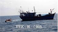 Cứu hộ thành công 11 thuyền viên tàu hàng gặp nạn trên vùng biển Quảng Trị