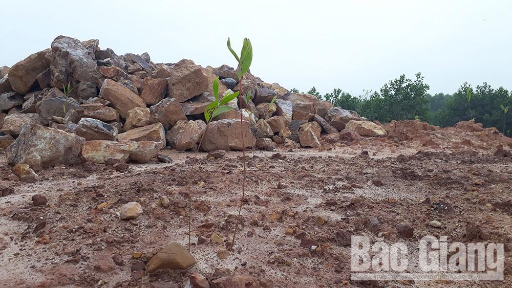 Lấp suối, thị trấn Thanh Sơn, Sơn Động, vi phạm gia tăng