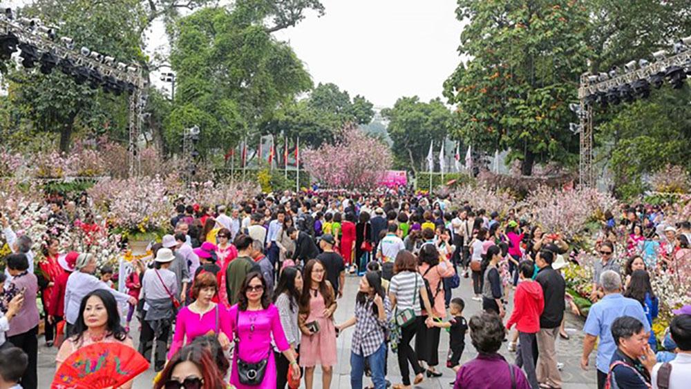 Lễ hội, hoa Anh đào, Nhật Bản, Hà Nội