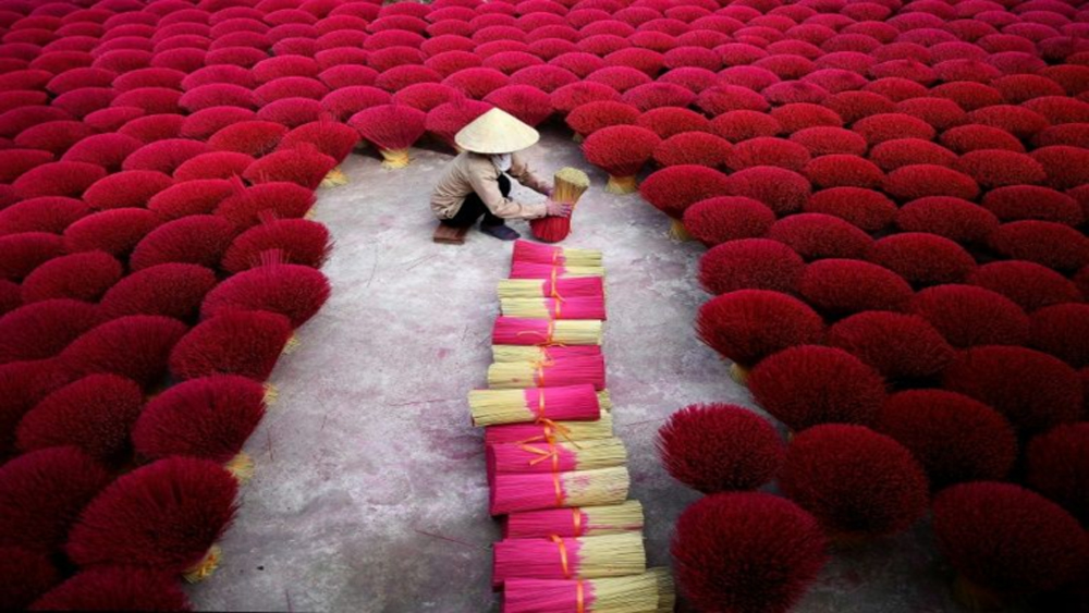 Vietnam's incense village blazes pink ahead of Lunar New Year