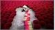 Vietnam's incense village blazes pink ahead of Lunar New Year