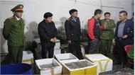 Đột kích cơ sở kinh doanh hải sản, bắt quả tang 3 người bơm tạp chất vào tôm