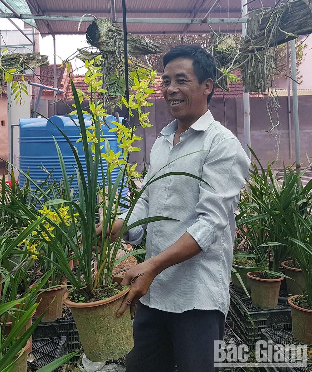 Mùa hoa, mùa vàng, thị hiếu, sản xuất nông nghiệp, khoa học kỹ thuật, giống cây mới