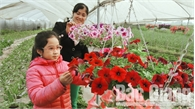 Bắc Giang, rộn ràng hoa xuân